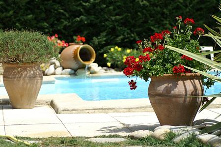 Jardinier paysagiste cr ation jardin entretien jardin for Entretien jardin en fevrier
